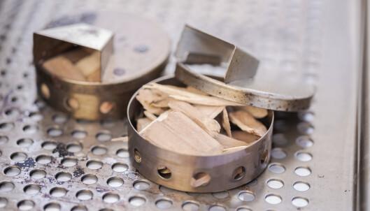 <strong>ENKELT:</strong> Du trenger ikke dyrt eller avansert utstyr for å prøve deg på røyking hjemme. Litt treflis og en metallbeholder eller litt aluminiumsfolie på grillen holder fint i første omgang. FOTO: Shutterstock/NTB Scanpix.