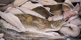 image: Frykter fiskebander: - Det er som narkosmugling