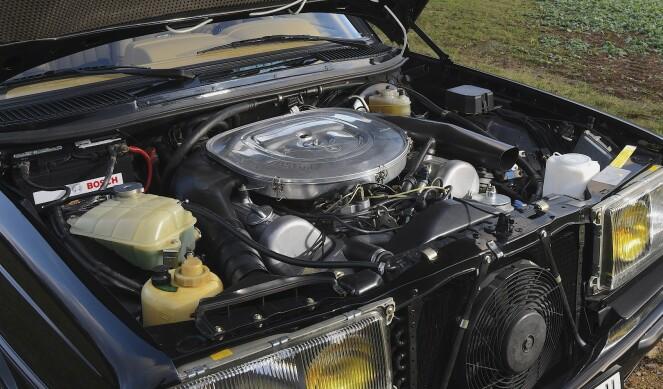 <strong>EN JUVEL:</strong> V8-motor på fem liter tar opp det meste av plassen her. Foto:Will Williams