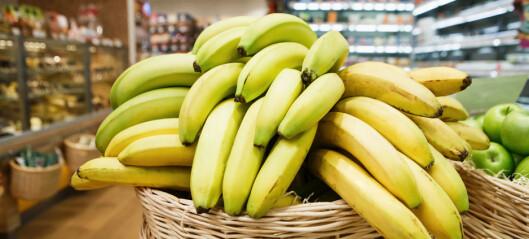 Sopputbrudd: Kan bety slutten for bananen vi spiser i Norge