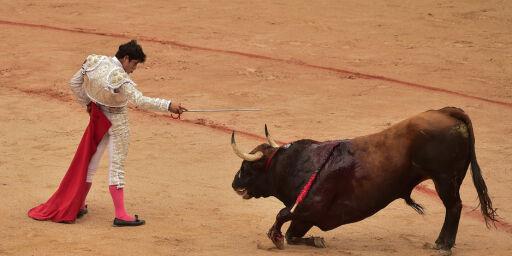 image: Tyrefekting gjenopptas på Mallorca - enorme protester