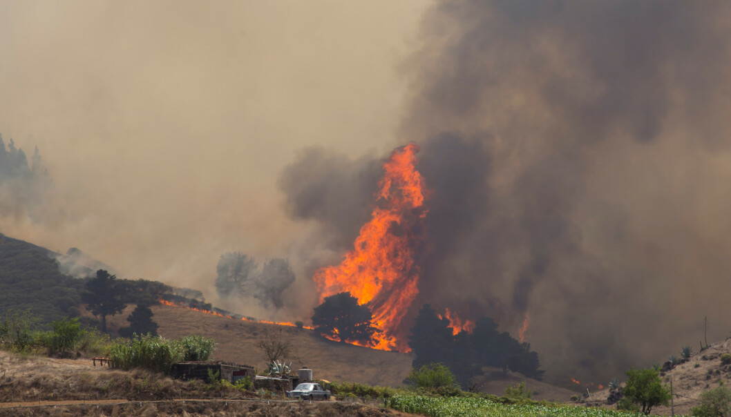 5.000 evakuert fra ny brann på Gran Canaria