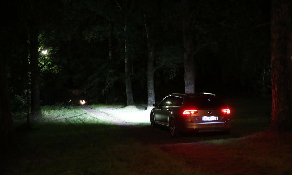 Politiet etterforsker fredag kveld to mulige voldtekter som skal ha skjedd i forbindelse med en fest i Frognerparken hvor rundt 300 ungdommer var til stede. Foto: Terje Bendiksby / NTB scanpix