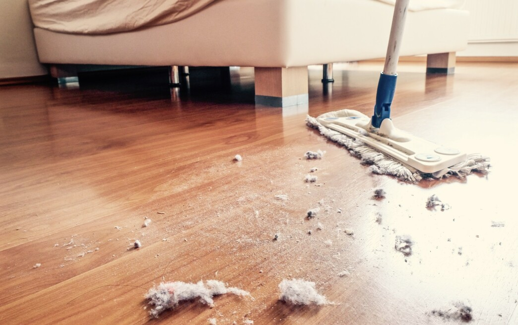 <strong>STØVETE:</strong> Støvet i huset inneholder en hel del svar på hvordan det står til med inneklimaet i hjemmet ditt. Illustrasjonsfoto: NTB Scanpix.
