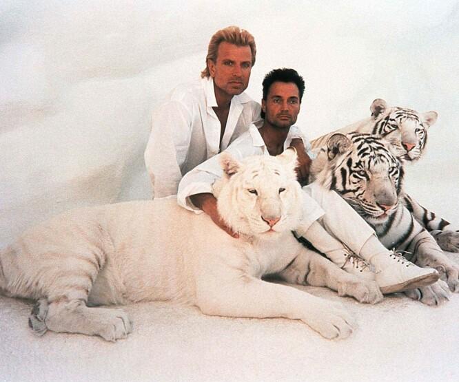 BROTHER FROM ANOTHER MOTHER: Siegfried &Roy med noen av sine hvite tigre og løver, som de betraktet som familiemedlemmer. Nå er altså Roy Horn (t.h.) død. FOTO: NTBScanpix