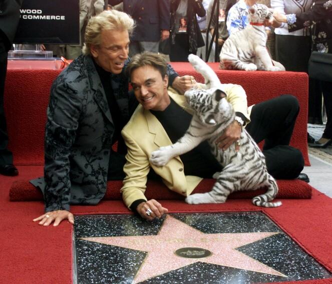 STJERNEMØTE: Siegfried& Roy hadde med seg hvite tigerunger da de fikk sin egen stjerne på Hollywood Walk of Fame i 1999. I dag er bare stjernen tilbake etter Roy Horn (t.h.), som døde av korona i mai 2020. FOTO: NTBScanpix