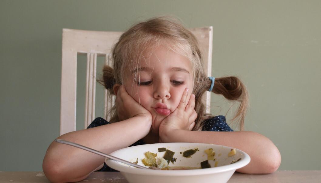 MATGLEDE: - Et sunt kosthold handler ikke om feil og riktig mat, det handler om helheten, sier ekspert.