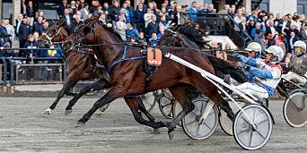 image: Full panikk i hestesporten