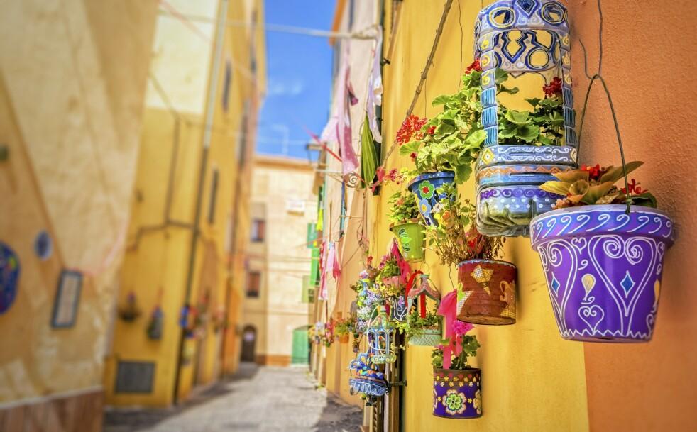 REISE: Søte blomsterpotter i byen Alghero på vestkysten av øya. FOTO: NTBScanpix