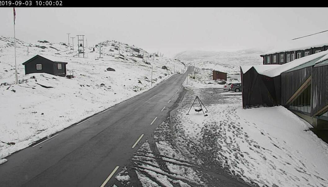 Det er sendt ut gult farenivå for fjellet i Sør-Norge. Det ventes mye snø fra torsdag til lørdag. Foto: Statens vegvesen / NTB scanpix