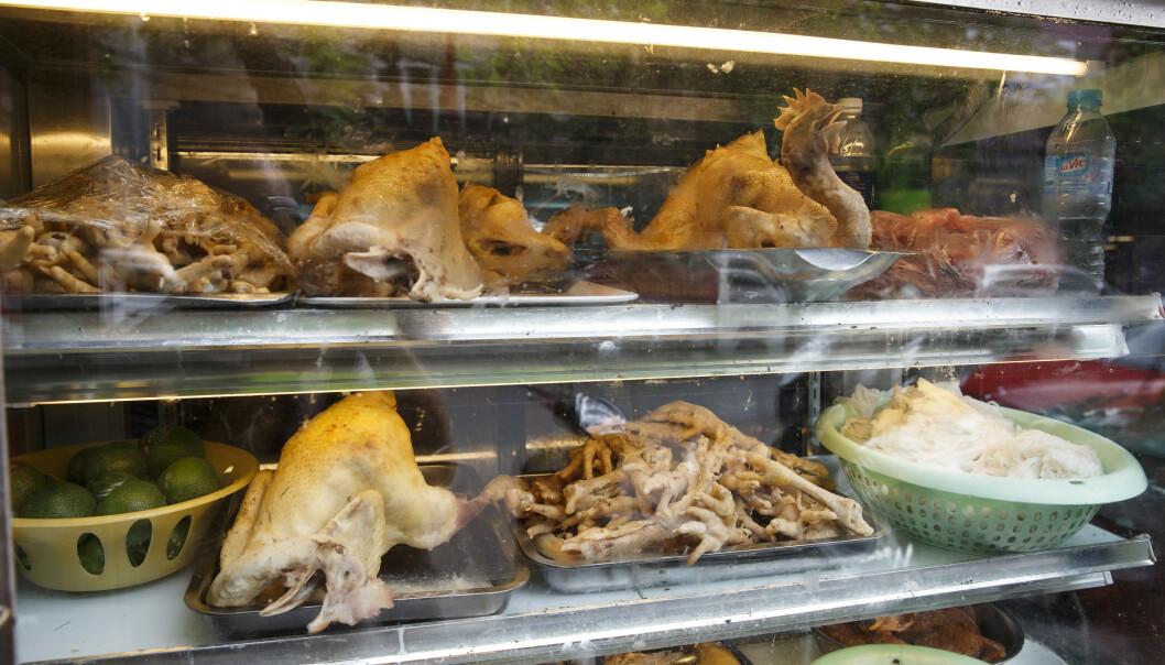 Det er ikke uvanlig å finne kjøtt fra hund og katt i restauranter og butikker i Vietnam. Foto: Heiko Junge / NTB scanpix