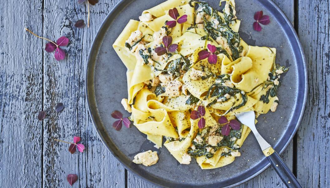 MIDDAGSTIPS: Fersk pasta med laks og spinat. FOTO: Winne Methmann