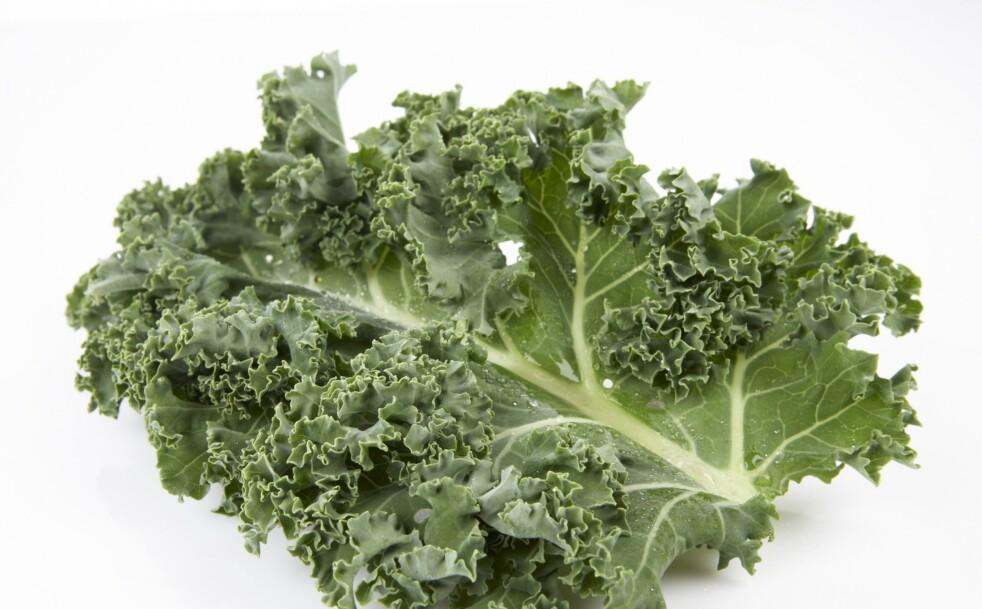<strong>TRENDY TRADISJON:</strong> Grønnkål har en karakteristisk smak og er noe av det sunneste du kan spise. Den er full av vitaminer, mineraler, kostfiber og samtidig fattig på kalorier. Foto: Frukt.no