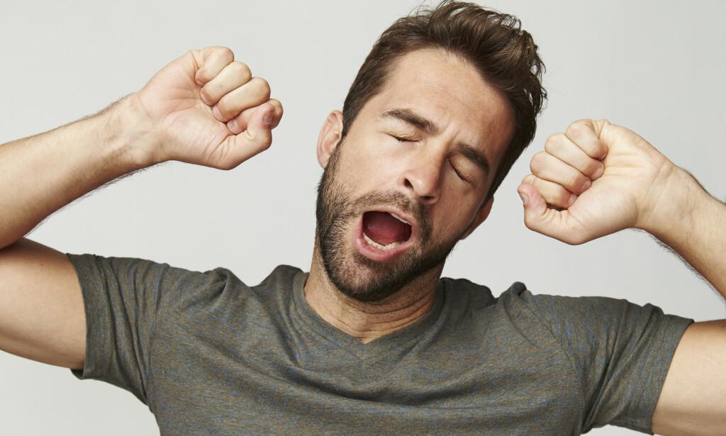 Hvorfor gjesper man? Foto: Sanneberg/Shutterstock/NTB scanpix.
