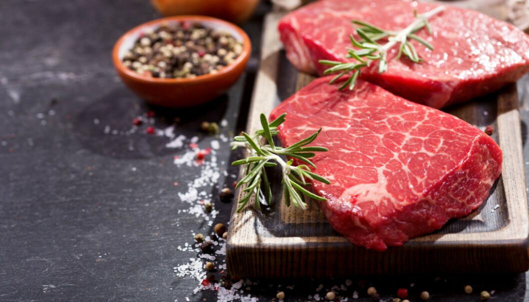 MYE METTET FETT: Kjøttdietten som den også kalles, er tydeligvis interessant blant amerikanerne. FOTO: NTB Scanpix
