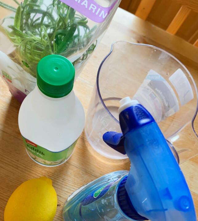 Du trenger kun fire ingredienser for å lage ditt eget vaskemiddel, og en tom sprayflaske. Foto: Berit B. Njarga