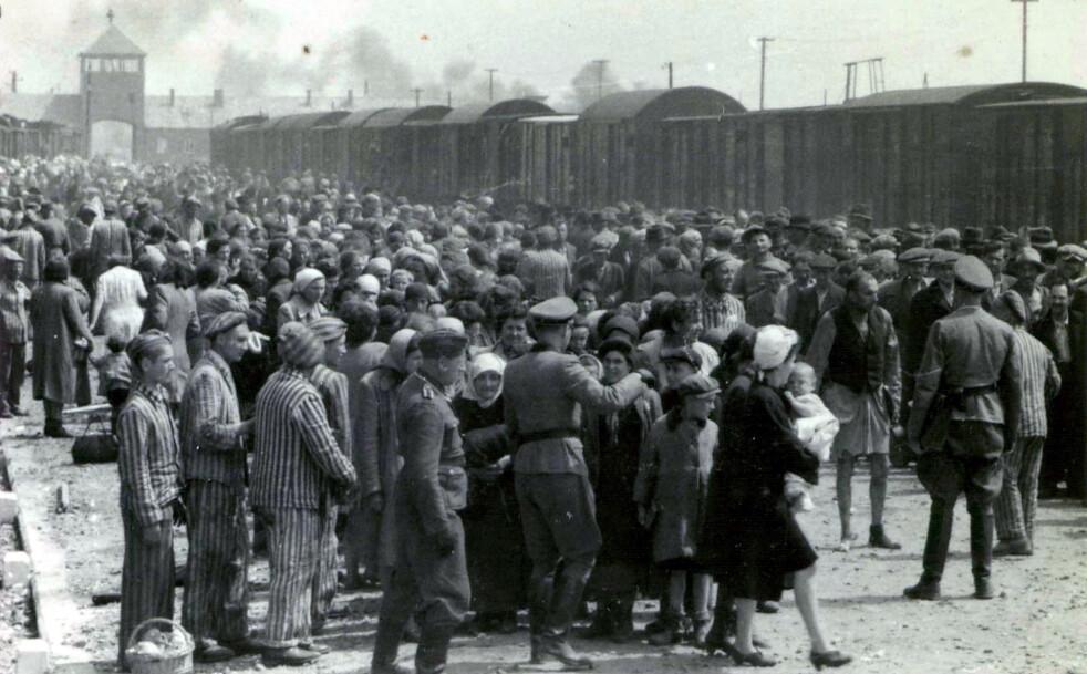 ENDESTASJON: For mange millioner uskyldige mennesker betydde togreisen fra Berlin gjennom Tyskland, for over 70 år siden, slutten på livets reise. Her fra konsentrasjonsleiren Auschwitz i Polen i mai 1944. FOTO: NTB scanpix