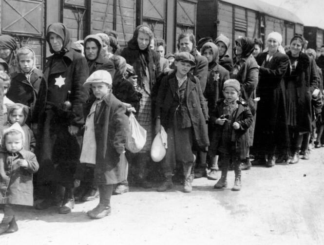 UTRYDDET: Mange av de som ble deportert til konsentrasjonsleirene ble fraktet i kuvogner gjennom Tyskland. FOTO: NTB scanpix