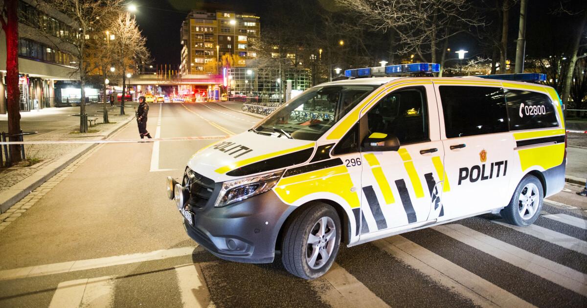 Natteravnene i Oslo slår alarm: - Har blitt vingeklippet