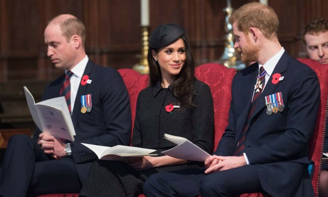 DISCUSSION: Several have claimed that Prince William disagrees with his brother's choice of girl. Photo: NTB Scanpix