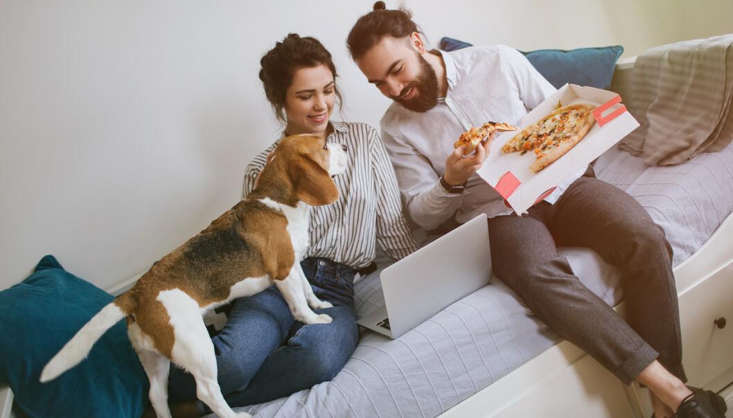 UNNGÅ PROSESSERT MAT: Det er sikrest å gi hunden er ren mat som kjøtt, fisk, brød, pasta, egg og kokte grønnsaker, sier ekspert.