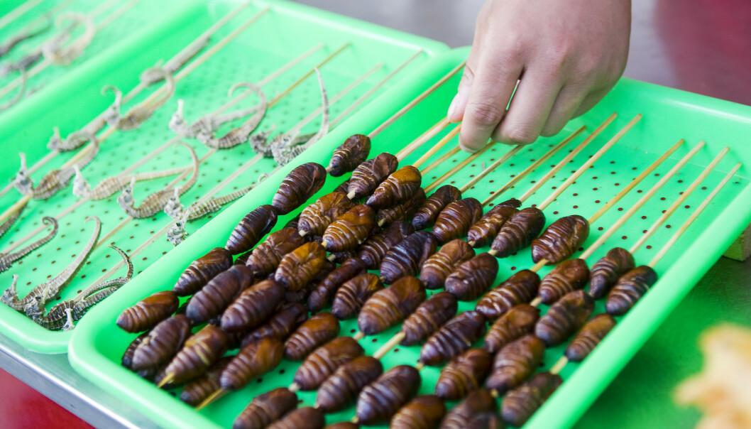 Fra OL i Kina 2008, Donghuamen Yeshi-markedet i hjertet av Beijing. På menyen sto blant annet blekksprut, larver, slanger og firfisler fritert på spyd. I framtiden må trolig resten av verden også finne bærekraftige produksjonsmetoder og råvarer så det blir mat nok til hele jordens befolkning. Arkivfoto: Heiko Junge / NTB scanpix
