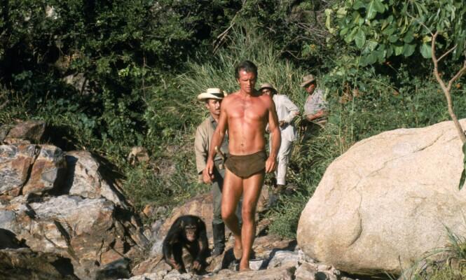 <strong>TV-STJERNE:</strong> Ron Ely er best kjent for rollen som Tarzan i tv-serien ved samme navn (1966-1968). Foto: Banner/ Kobal/ REX/ NTB scanpix