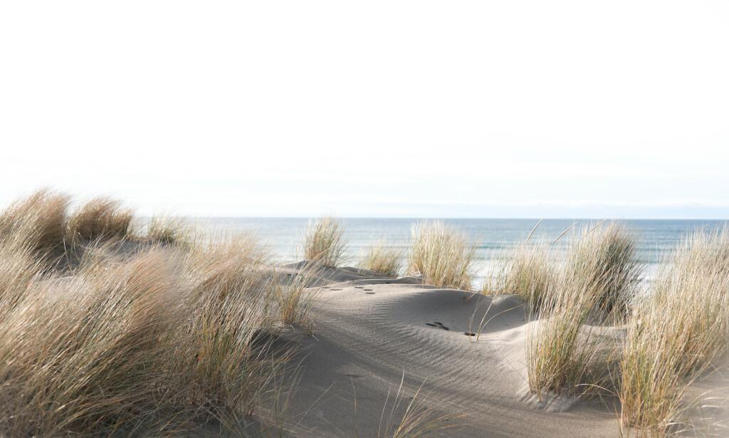 INSPIRERT AV NATUREN: Årets farge, ifølge Fargerike-kjeden, er inspirert av naturen, og særlig sand. FOTO: NTB Scanpix