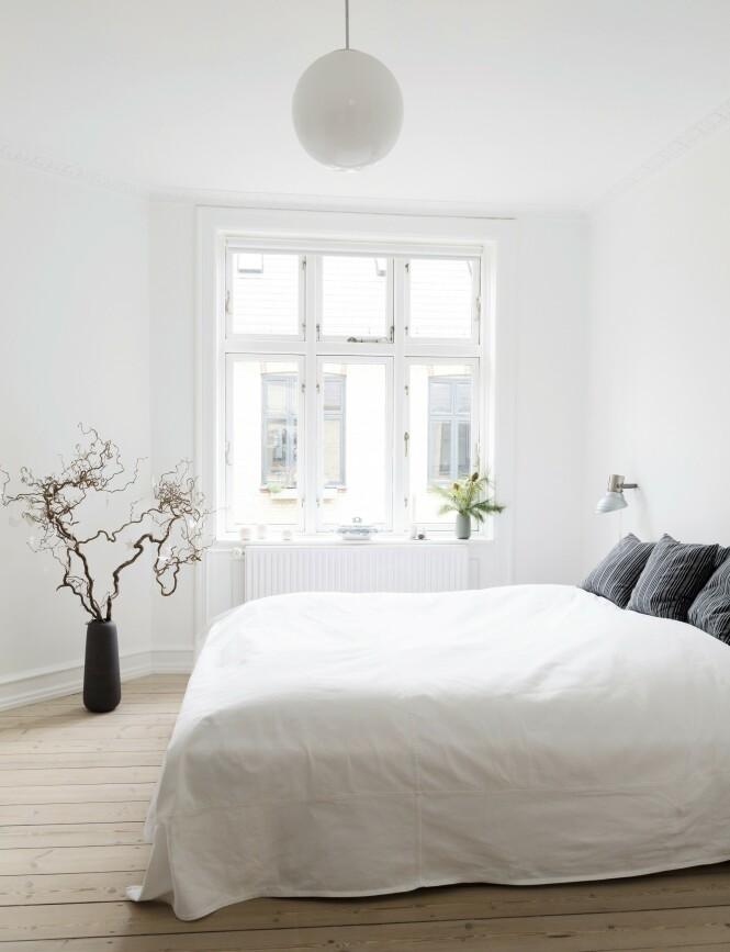 Soverommet er   innredet for å gi en rolig følelse som innbyr til en god natts søvn. Sengeteppet har Ditte sydd selv. Tips! Trollgreiner og silkefuru i vaser er minst like vakkert som blomster. Og så holder de lenge! FOTO: Anitta Behrendt