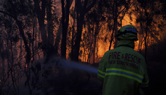 Australia: Kraftig skogbrann stenger flere hundre skoler