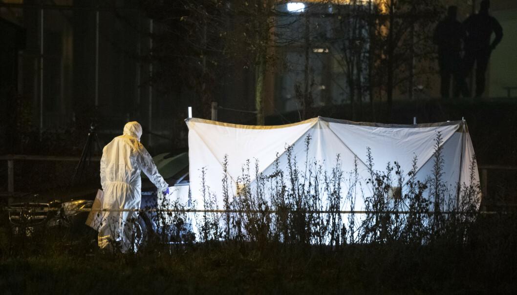 Politiet jobbet gjennom natten på stedet der en kvinne ble funnet drept i en bil i Malmö torsdag kveld. Foto: Johan Nilsson / TT / NTB scanpix