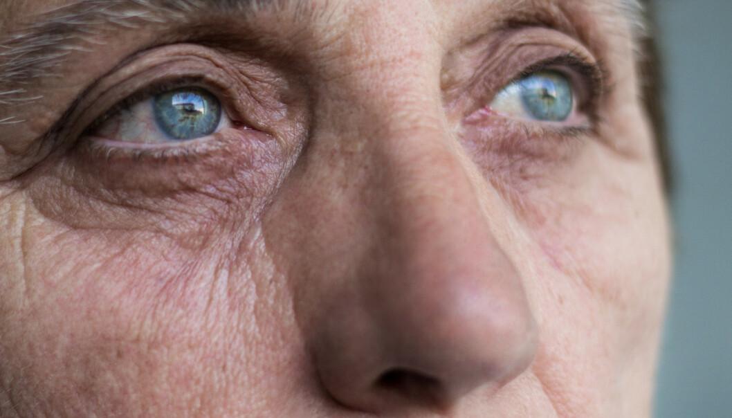 - Å gå med en trussel hengende over seg over tid går ut over hormonbalansen. Nivået av kortisol og kolesterol øker i kroppen, noe som igjen kan føre til hjerteinfarkt. Immunforsvaret påvirkes. Man får høyere sykelighet og høyere dødelighet. Det er et folkehelseproblem, sier voldsforsker Astrid Sandmoe. Foto: Scanpix/Shutterstock