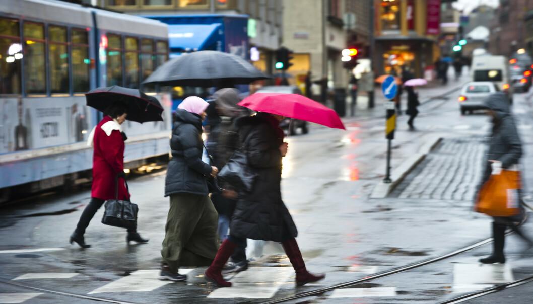 Regnvær og høst i Oslo. Illustrasjonsfoto: Aleksander Andersen / NTB scanpix