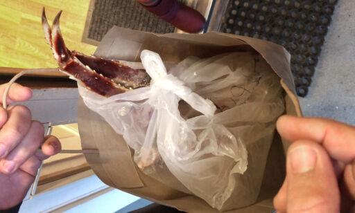 image: Her selges kongekrabbe fra massasjeinstitutt