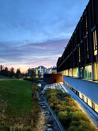 Elena Snellingen studerer her; ved Institutt for Informatikk på Universitetet i Oslo. 📸: Privat