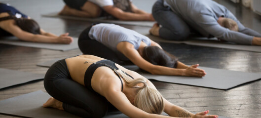 De beste yogaøvelsene mot menssmerter