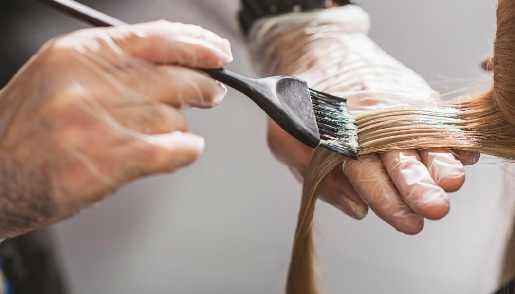 <strong>DROPP TØRRSJAMPO:</strong> Har du tørrsjampo i håret når det blekes kan det bli skadet. FOTO: NTB Scanpix