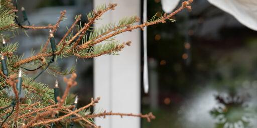image: - Gi hodepinetabletter til juletreet
