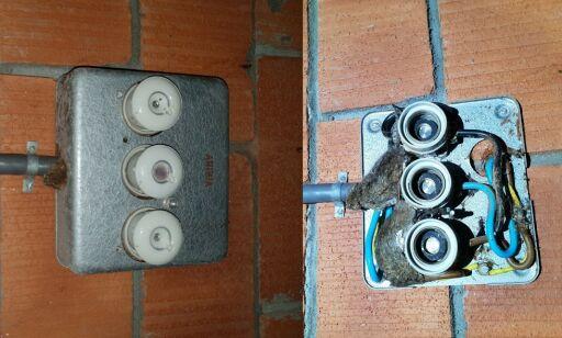 image: Her blir mus en brannfelle