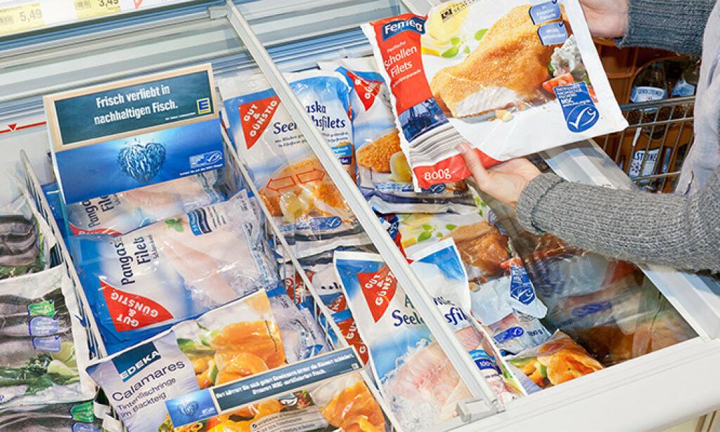 OMFATTENDE LOVBRUDD: Ved å gå gjennom mer enn over 80 tilsynsrapporter fra Arbeidstilsynet på fiskemottakene, har Dagbladet avdekket at lovbruddene blant de sertifiserte fiskemottakene er svært omfattende. Foto: MSC