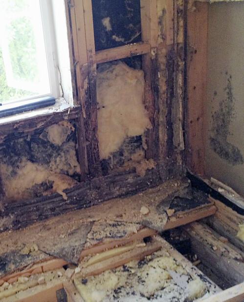 REV ALT: Hele gulvet i første etasje ble revet før alt ble bygget opp igjen på nytt. Foto: Privat
