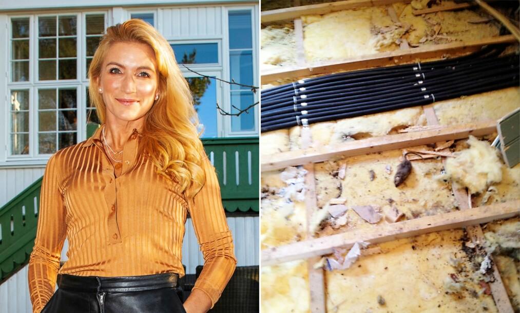 ROTTER: Karianne Amlie og familien fikk seg en overraskelse da de overtok huset. Foto: Morten Eik, Se og Hør / Privat