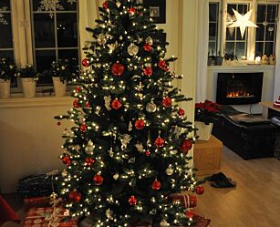 image: - Vann juletreet med sitronbrus eller champagne