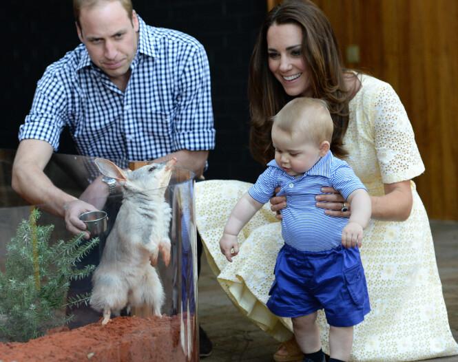 BETYDNINGSFULLT MØTE: Det var denne skapningen som inspirerte prins Georges første ord. Her fotografert i Taronga Zoo i april 2014. Foto: NTB scanpix