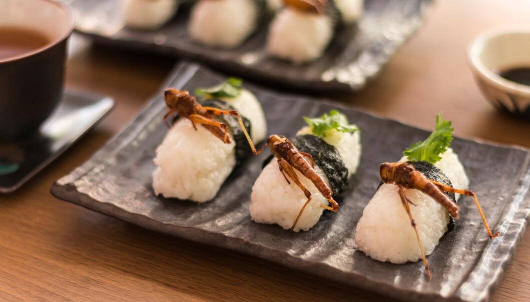 LIKE TRENDY SOM SUSHI? - Det går nok en stund før det å spise insekter blir en trend, sier eksperten. FOTO: NTB Scanpix