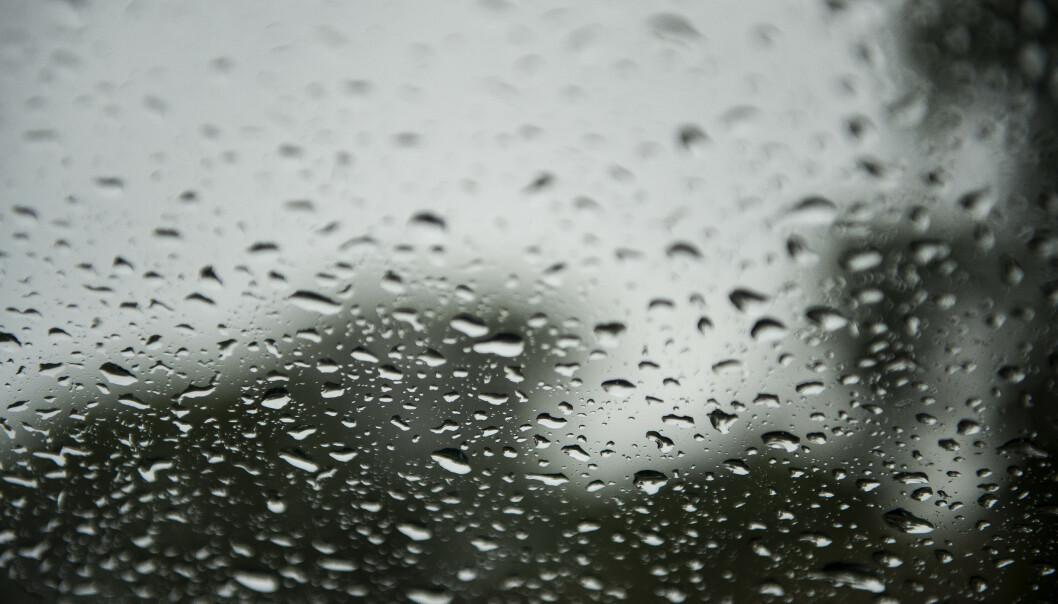 I store deler av Sør-Norge blir det regn de neste dagene. Kun i de to nordligste fylkene vil det vær snø når julaften kommer, ifølge Meteorologisk institutt. Illustrasjonsfoto: Carina Johansen / NTB scanpix