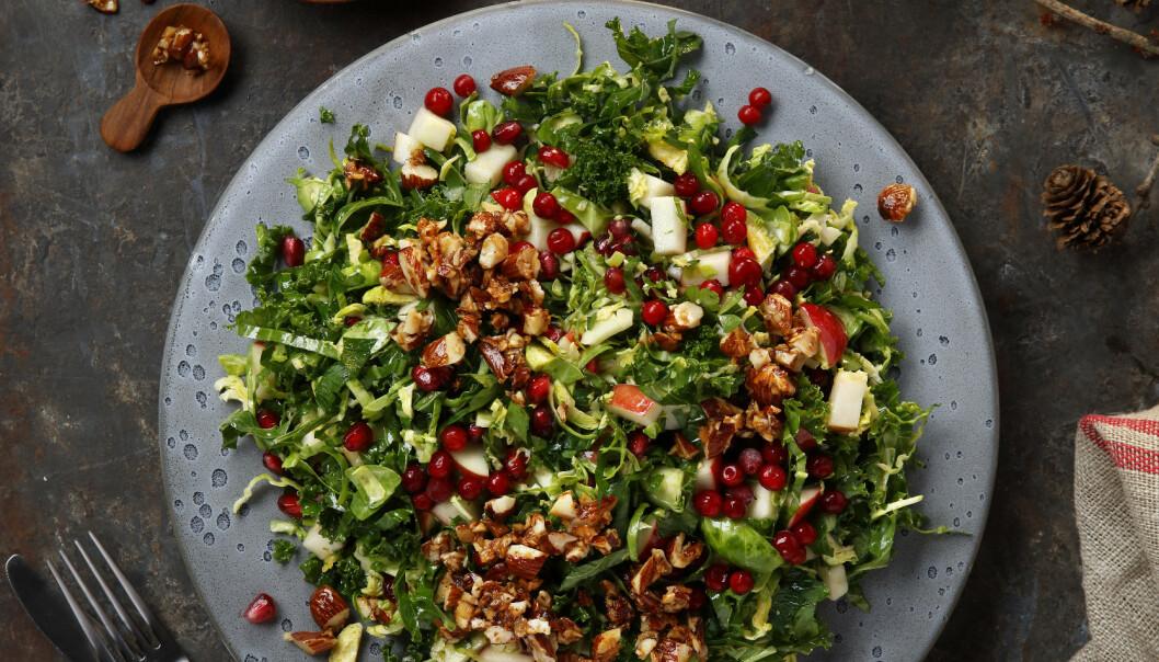 <strong>Rosenkålsalat:</strong> Server salaten til julematen, eller spis den alene som en enestående rett. Foto: Mari Svenningsen, frukt.no