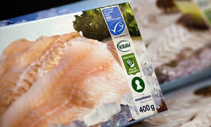 <strong>KVALITETSMERKET TORSK:</strong> Krav-merket garanterer at fisken er produsert under lovlige arbeidsforhold. Foto: KRAV