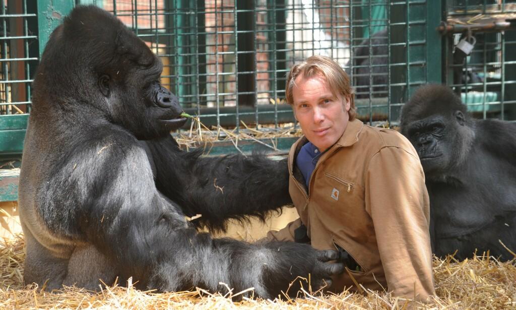 VIL LEGGE NED: Dyrehageeieren Damian Aspinall (59), her avbildet med gorillaen Kifu, mener alle verdens dyrehager bør legges ned. Foto: Murray Sanders / NTB Scanpix
