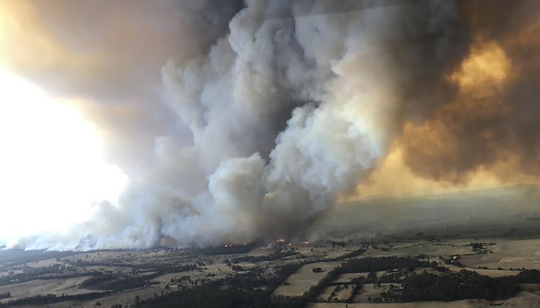 Røyken fra Australias branner har spredt seg til flere land. Også i Chile og Argentina, 12.000 kilometer fra Australia, ble røyken observert mandag. Bildet er fra Bairnsdale i delstaten Victoria. Foto: Glen Morey via AP / NTB scanpix